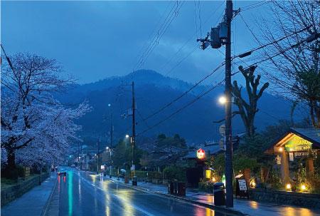 桜20200327cS.jpg