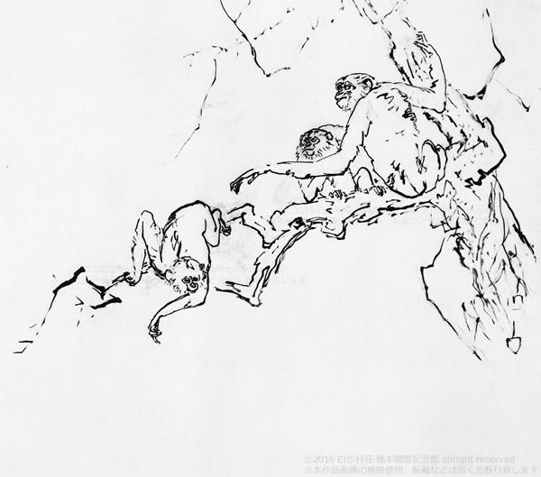 玄猿白鶴画稿左隻S.jpg