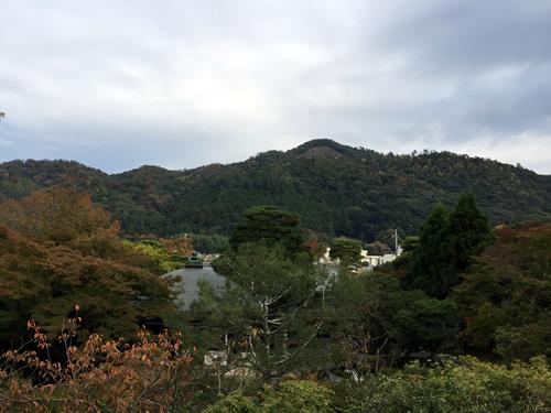 紅葉20141108.jpg