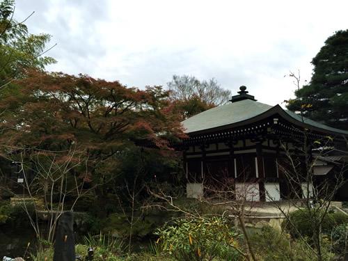 紅葉20151125cS.jpg